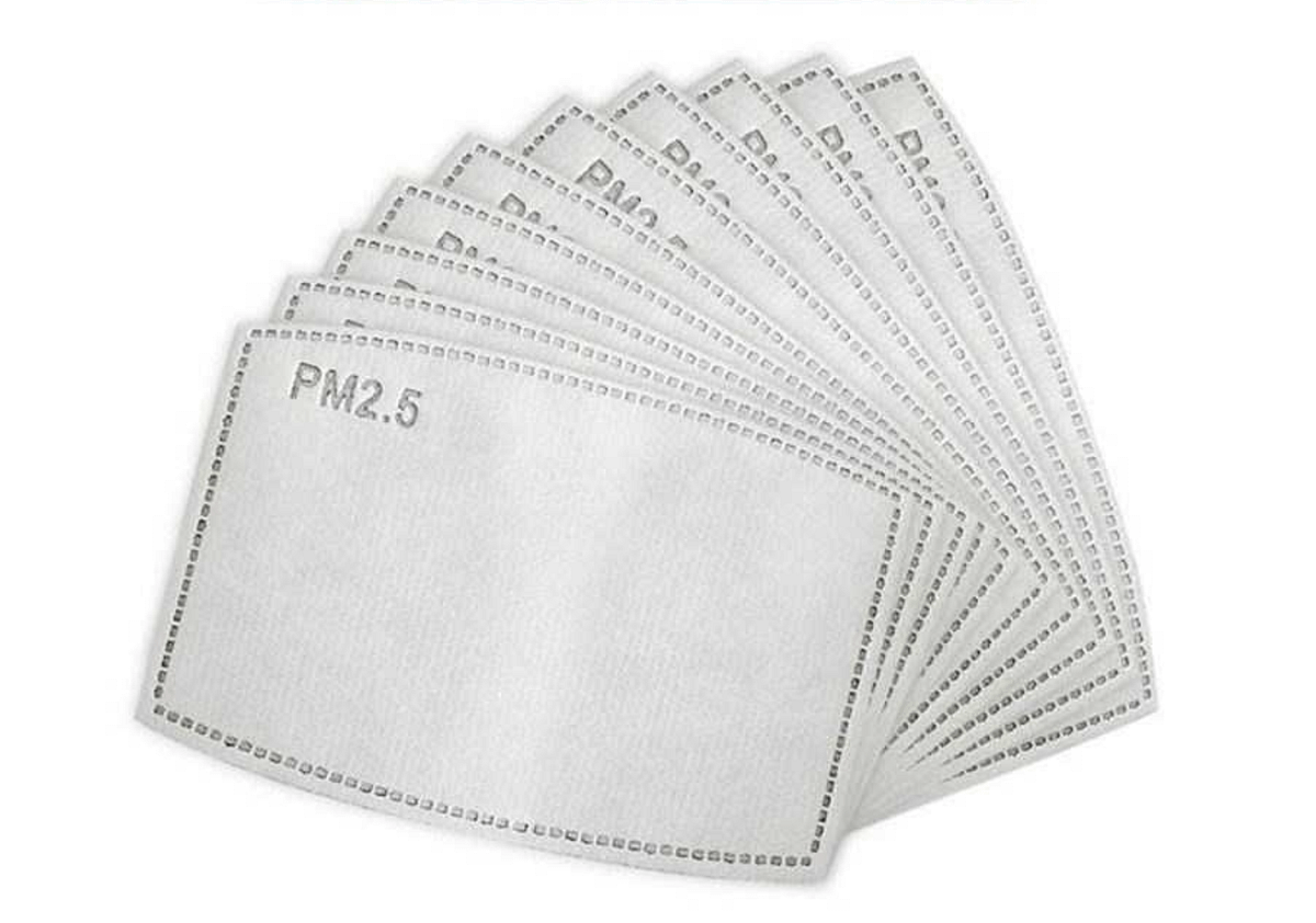 PM2.5 Charcoal Filters Face Mask June The Six